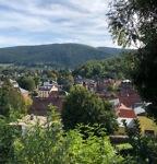 Blick über die Altstadt Bad Blankenburgs